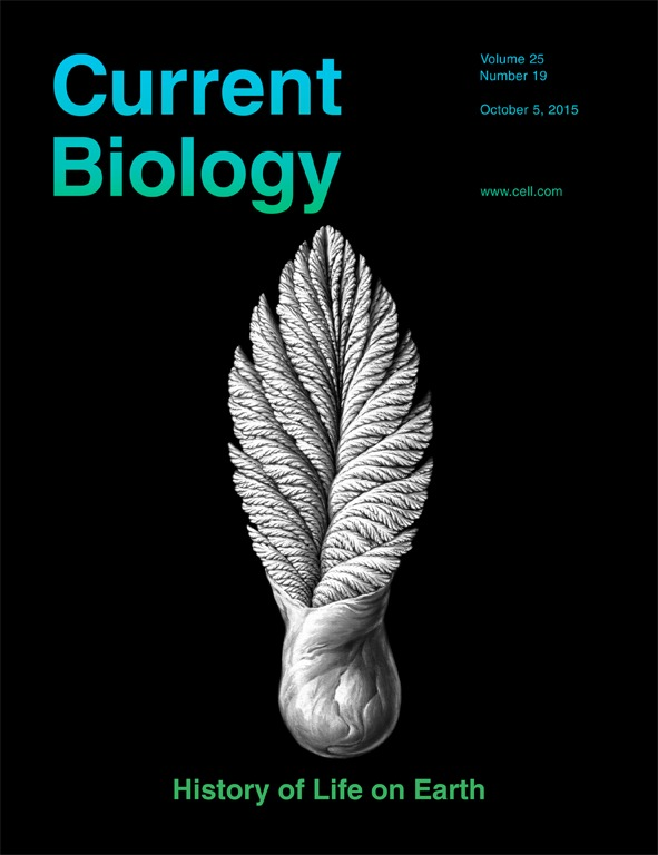 life on earth biology With a proven and effective tradition of engaging readers with real-world applications, high-interest case studies, and inquiry-based pedagogy, biology: life on earth fosters a lifetime of discovery and scientific understanding maintaining the conversational, question-and-answer presentation style that has made the text a best-seller, the.